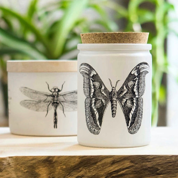 Citronella Sea Salt Candle - Butterfly