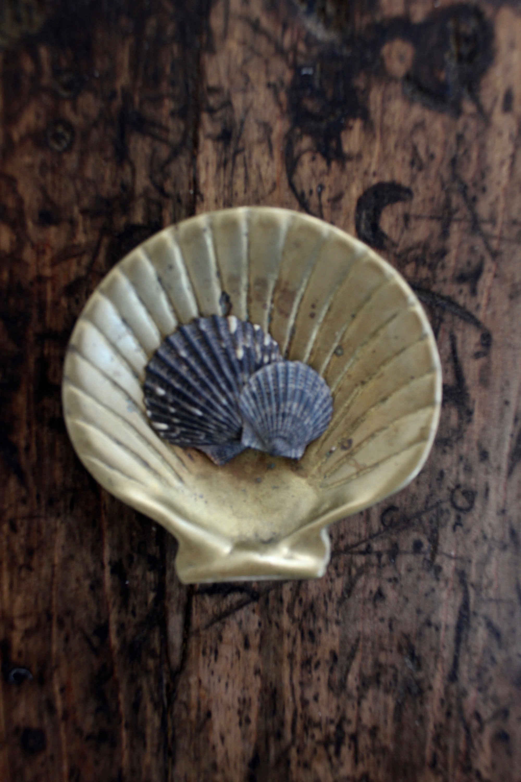 Vintage Brass Scallop Catch All - Diamonds & Rust