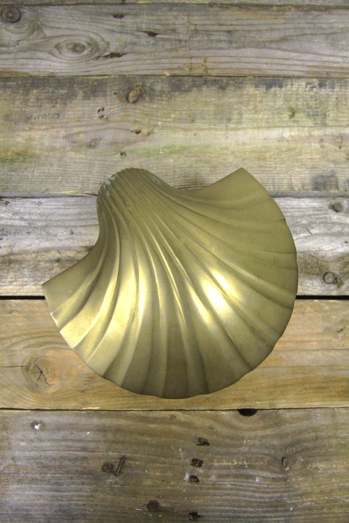 Giant Brass Clam Box