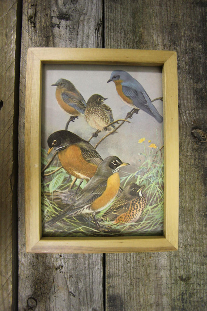 Birds Framed Wall Art
