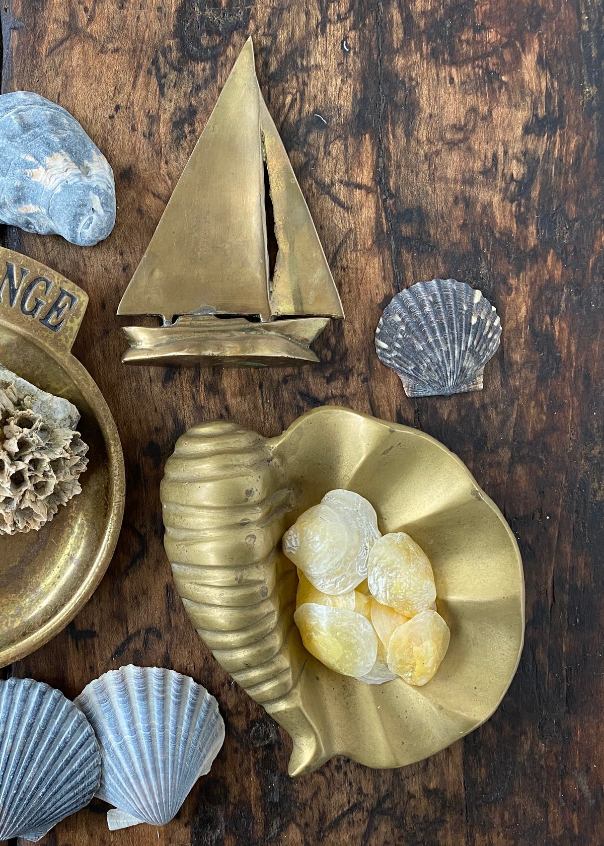 Brass Clam Catchall