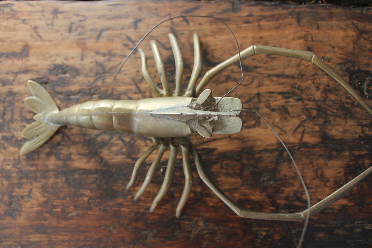 Vintage Brass Lobster - Diamonds & Rust