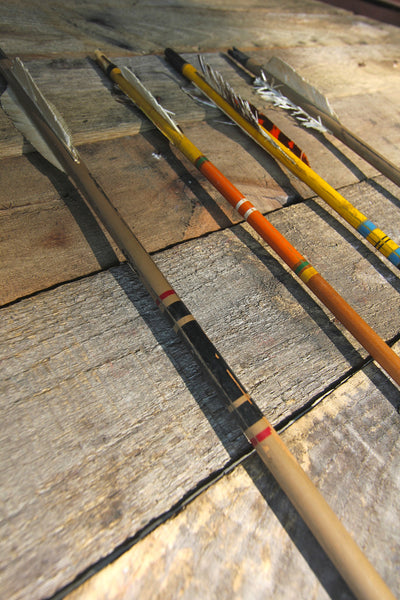 4 Vintage Arrows and Carrying Case