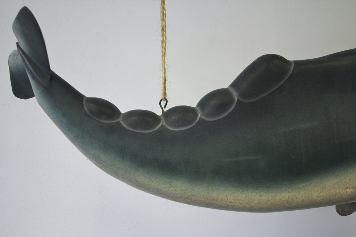 Sperm Whale Sign