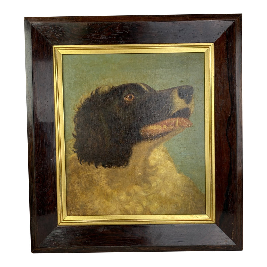 English Signed Oil on Canvas of a Spaniel, 1862