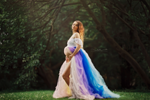 Copy of Rainbow Tulle Maternity Dress