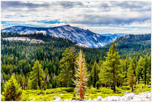 GELATO GLOBAL PRINT - Landscape Aluminum Print - Granite Mountains from Olmsted Point - Yosemite National Park in CA USA