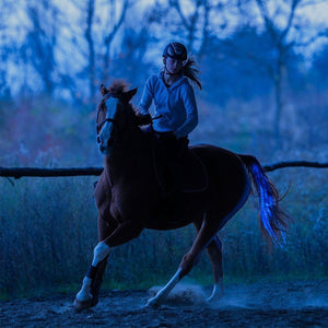 The Horse Tail USB Chargeable LED Light