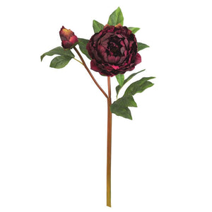 Burgundy Peony Pick - Box of 2