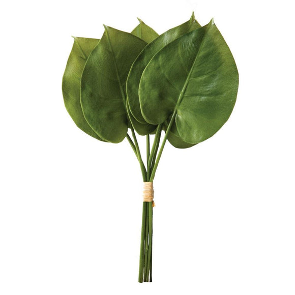 Philodendron Spray