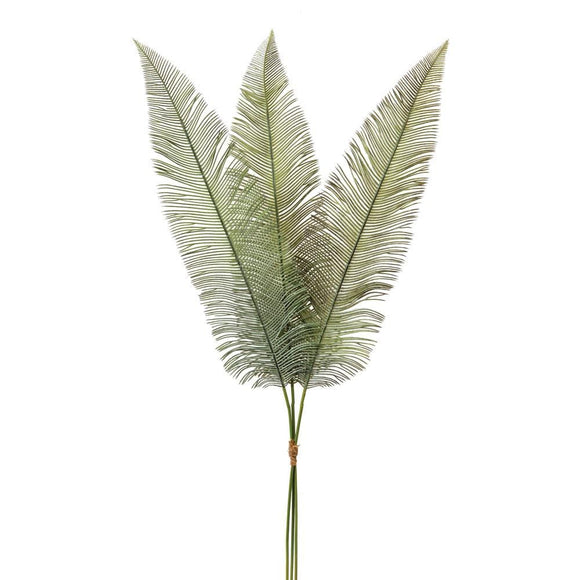 Fern Spray - Box of 2