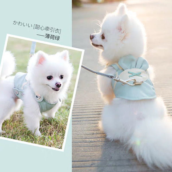Cute Bunny clothing harness with breathable material & leash