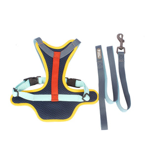 Cushion Harness & Leash set (M-XL)