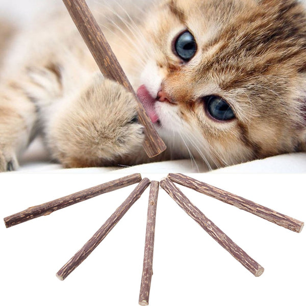 Silver vine for cats 10 sticks