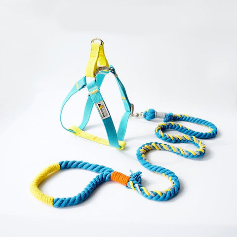 Colourful Rope Leash with harness set (M)