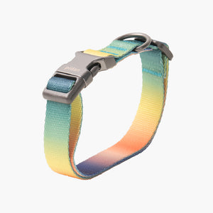 Pidan Pet collar for dog (Rainbow)