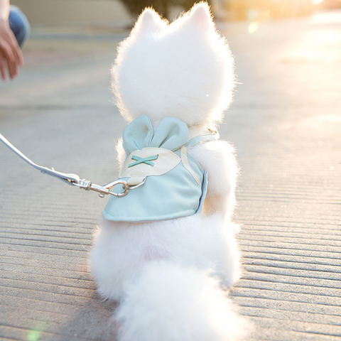 Cute Bunny Clothing Harness & Leash set (XS-S)