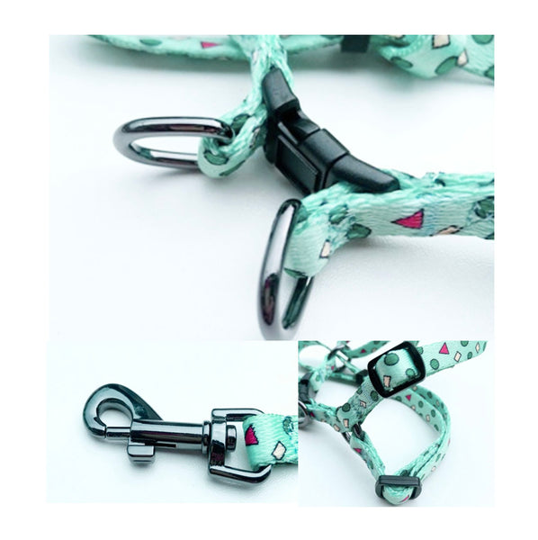 Shin Chan Harness & Leash