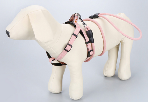Pastel harness & leash set (S-M)