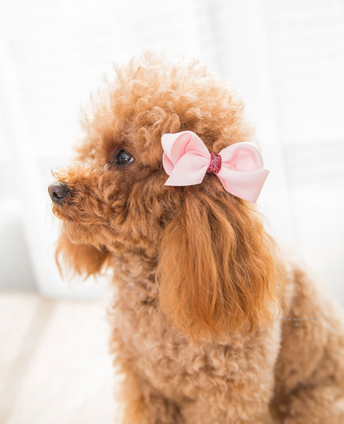 Pet hair accessories set of 18