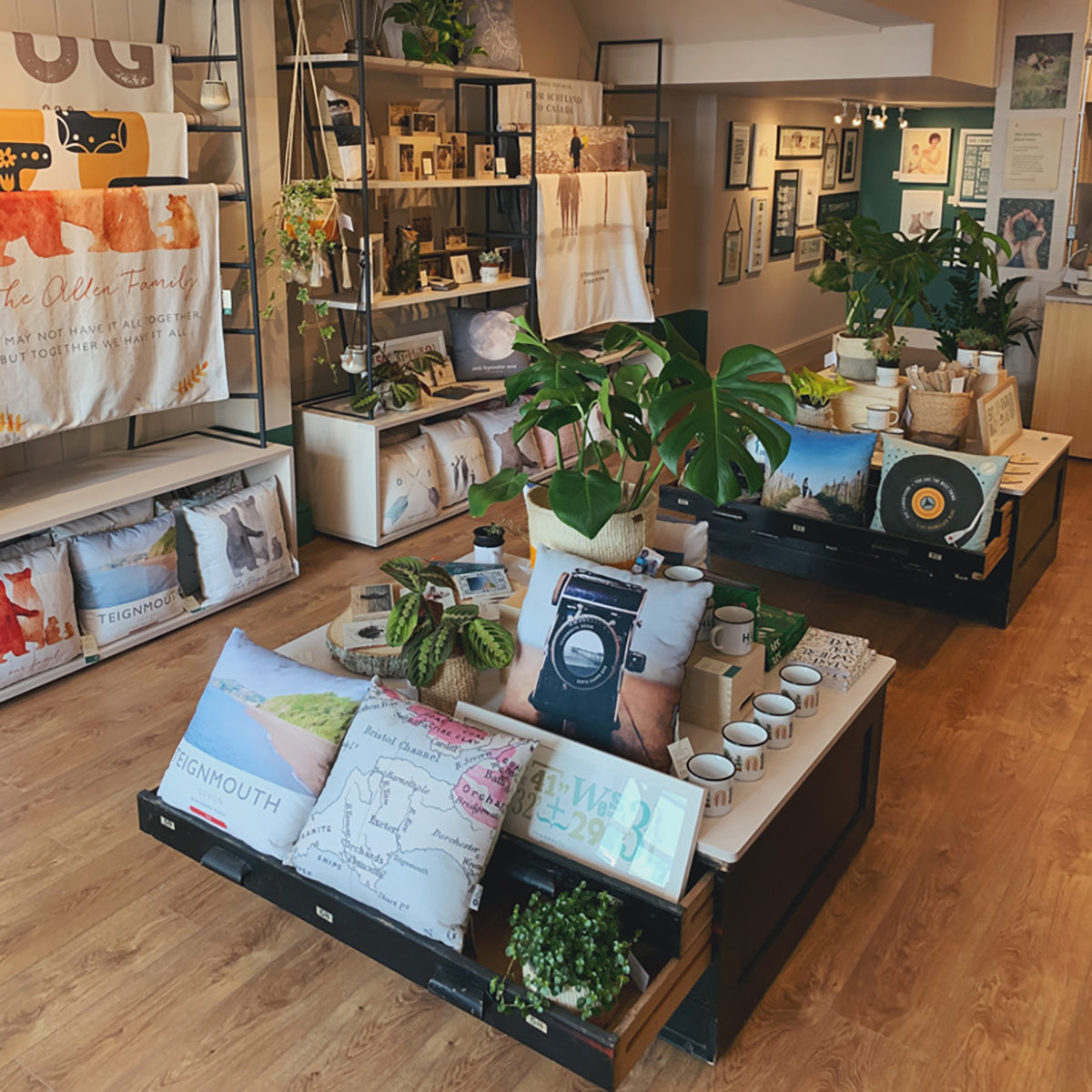 ROAM by The Drifting Bear Co, Gift Shop Teignmouth Devon