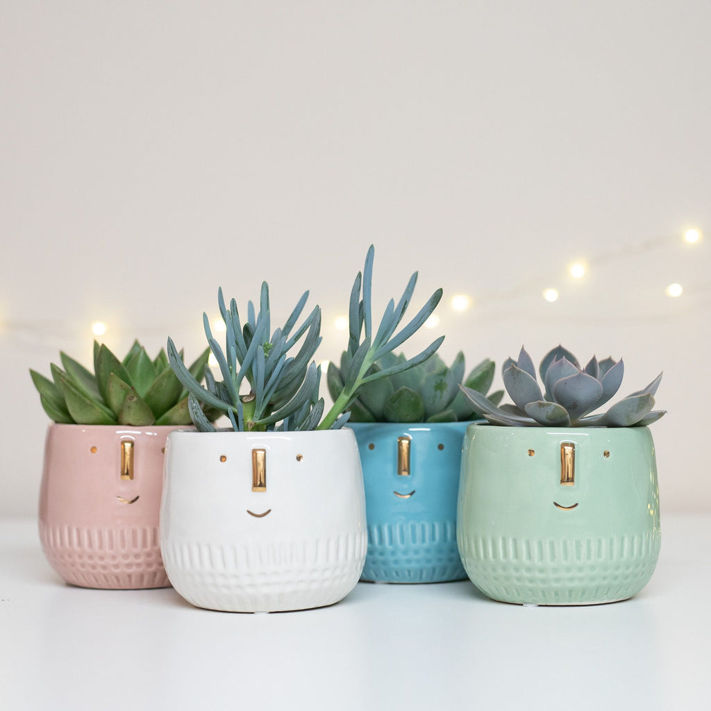 Coloured Ceramic Face Planter