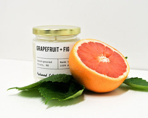 foxhound collection grapefruit + fig candle