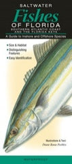 Saltwater Fishes of Florida: Southern Atlantic Coast and the Florida Keys