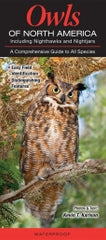 Owls of North America - New!