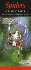 Spiders of Florida - NEW