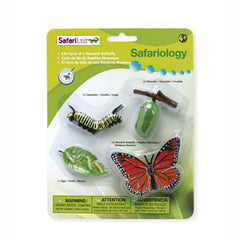 Monarch Butterfly - Metamorphosis Life Cycle