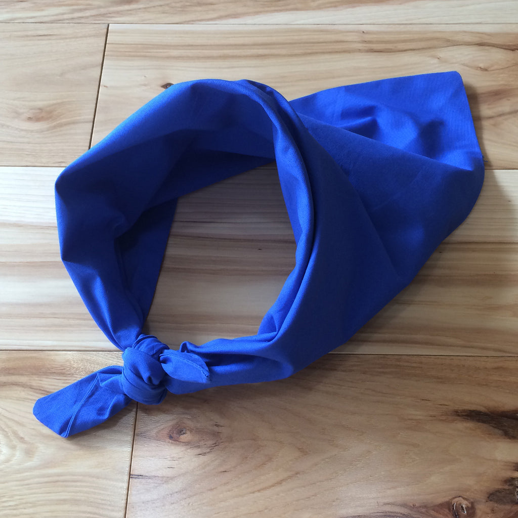 blue triangle kerchief - Lennard Taylor