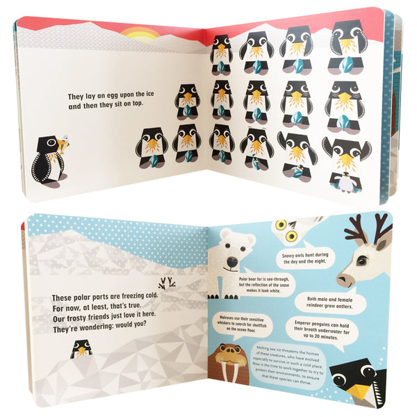 The Polar Pack Board Book - New!