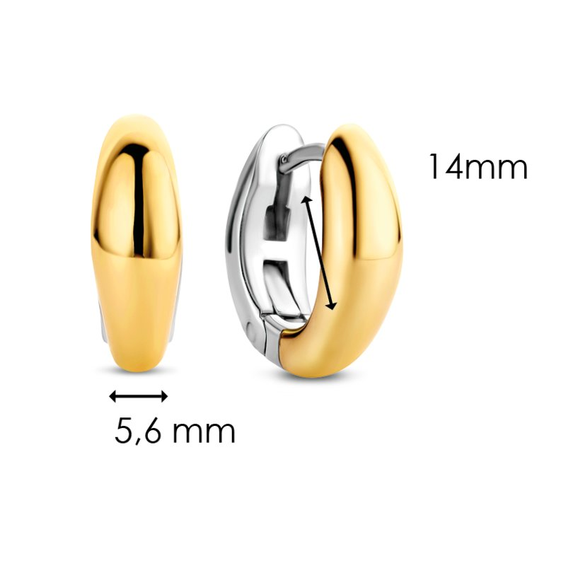Ti Sento 7804sy Milano Yellow-Gold Plating Earrings