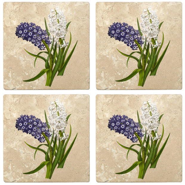 "4"" Absorbent Stone Flower Designs Drink Coasters, Purple White Hyacinths, 2 Sets of 4, 8 Pieces - Christmas by Krebs Wholesale"