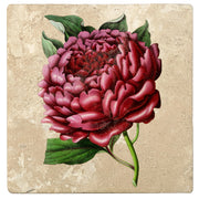 "4"" Absorbent Stone Flower Designs Drink Coasters, Red Charm Peony, 2 Sets of 4, 8 Pieces"