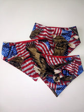 Load image into Gallery viewer, America Snap-on Pet Bandana