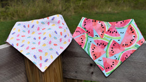Watermelon Snap-on Pet Bandana