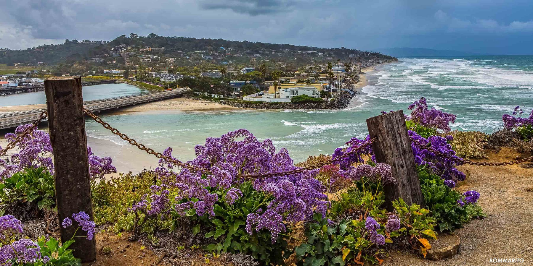 Del Mar Superbloom