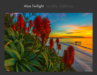 La Jolla Collection - Best Sellers and Artist Favorites (1)