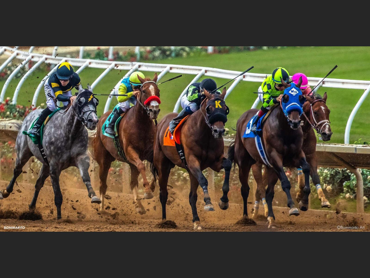 Opening Day Races