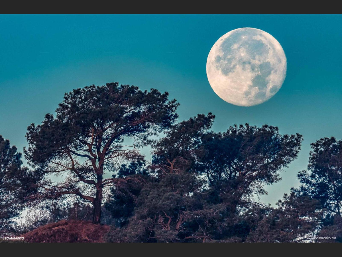 Torrey Pines Supermoon