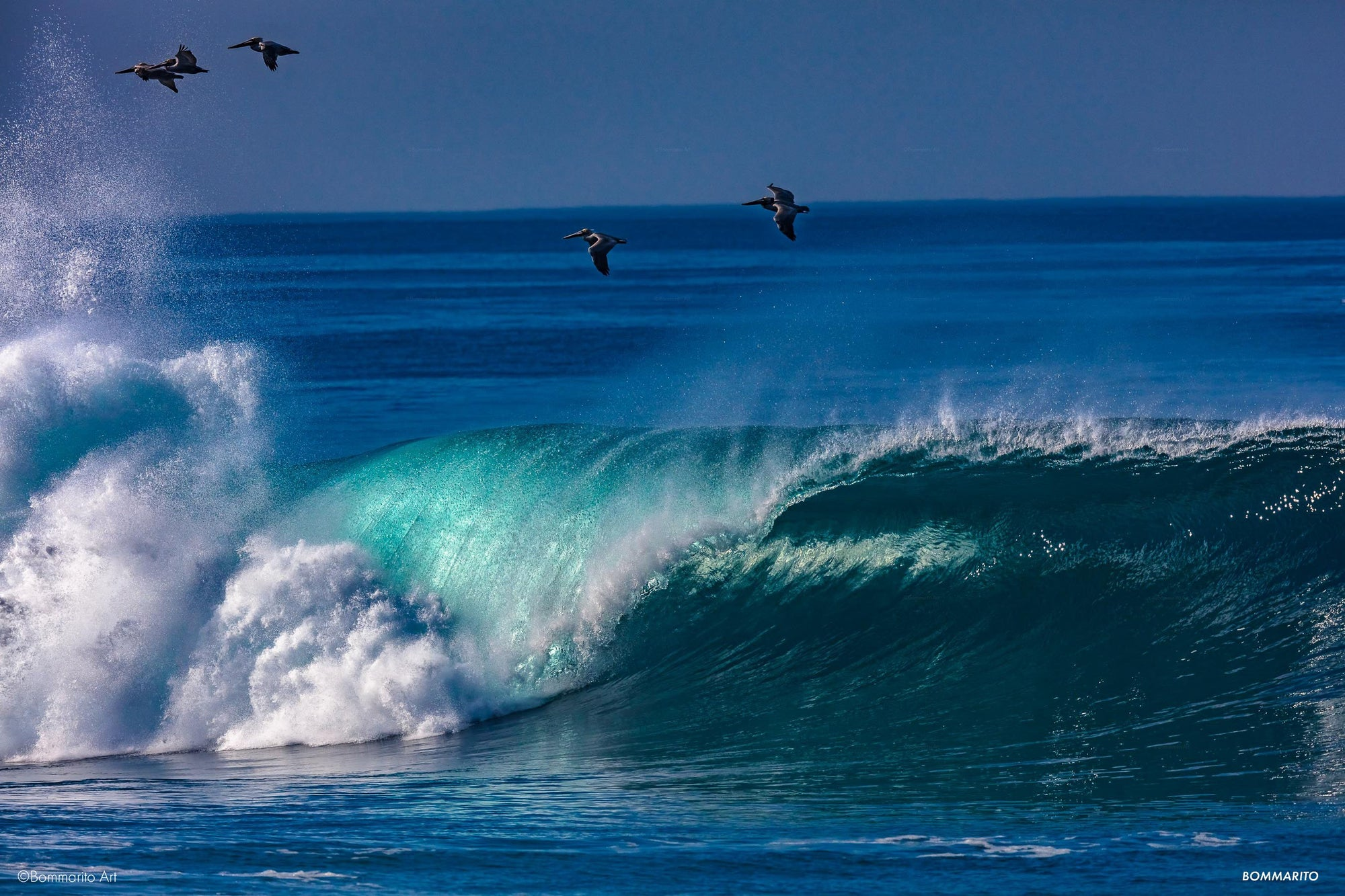 Western Pacific  Swell