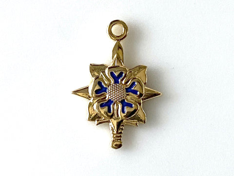 Military Intelligence (MI) - Army Branch Charm