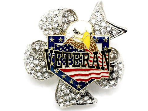 Veteran Eagle Limited Edition Brooch BR63