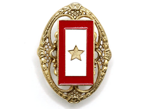 Gold Star One of a Kind Brooch BR52