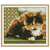 Cat -  DIY Cross Stitch Kits - idiypaint