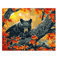 Black Bear-40*50cm DIY Paint by Numbers Kits - idiypaint