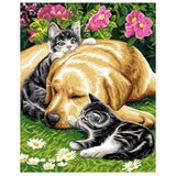 Dog And Cat Sleeping -40*50cm DIY Paint by Numbers Kits - idiypaint