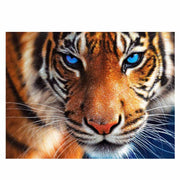 Tiger Head- DIY 5D Diamond Painting - idiypaint